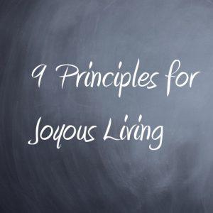 9principles